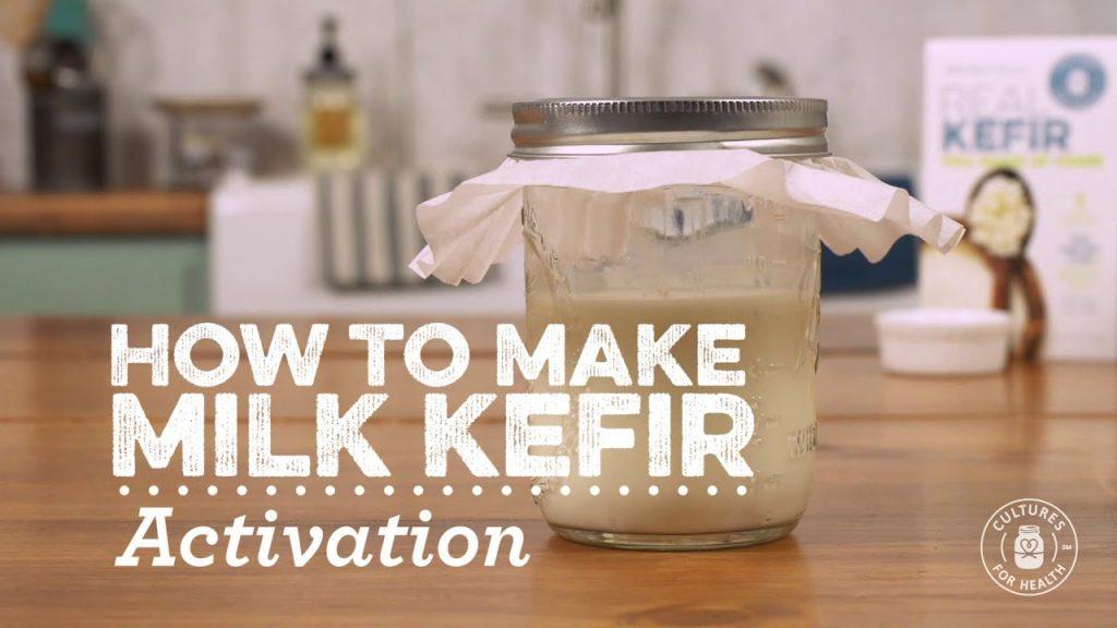 Activating Milk Kefir Grains