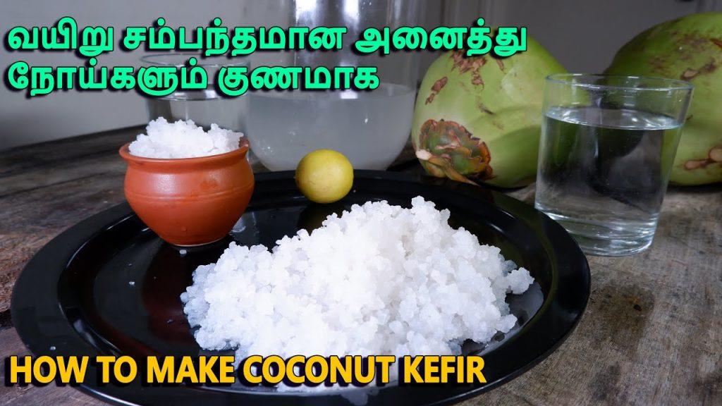 How To Make Coconut Kefir At Home | making Coconut Kefir | best probiotic foods | Milk Kefir