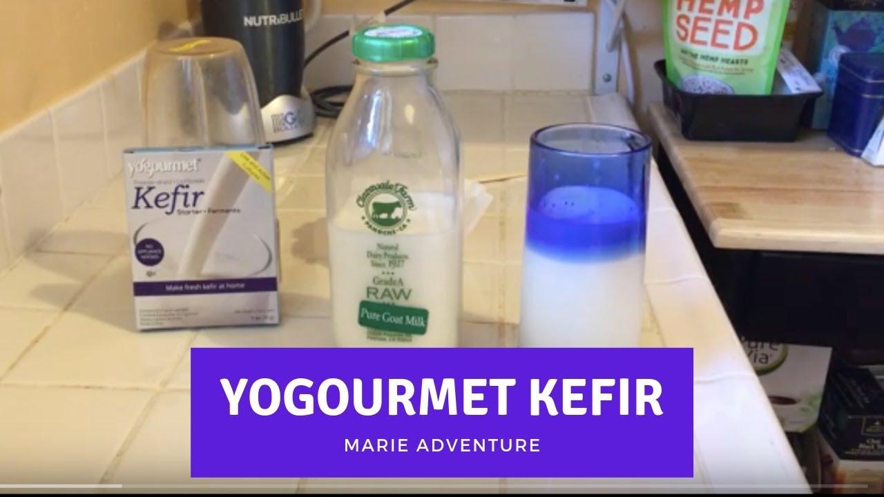 How To Make Your Own Kefir with Yogourmet Kefir Starter Kit
