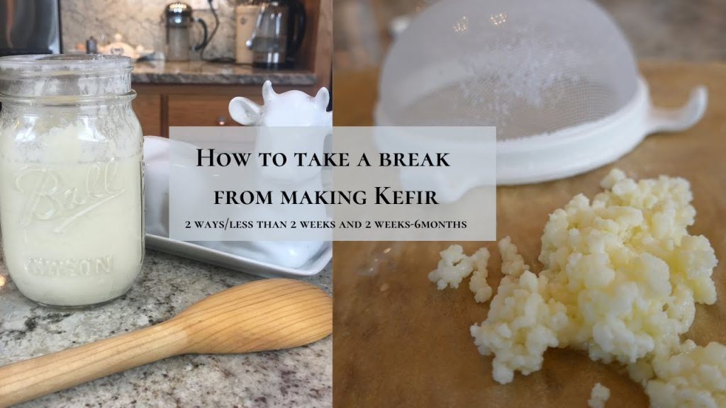 How To Store Milk Kefir Grains When You Take a Break