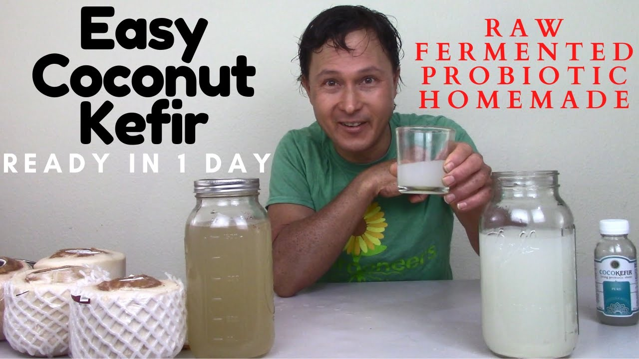 How to Make Raw Coconut Kefir in 1 Day Fermented Probiotic Drink