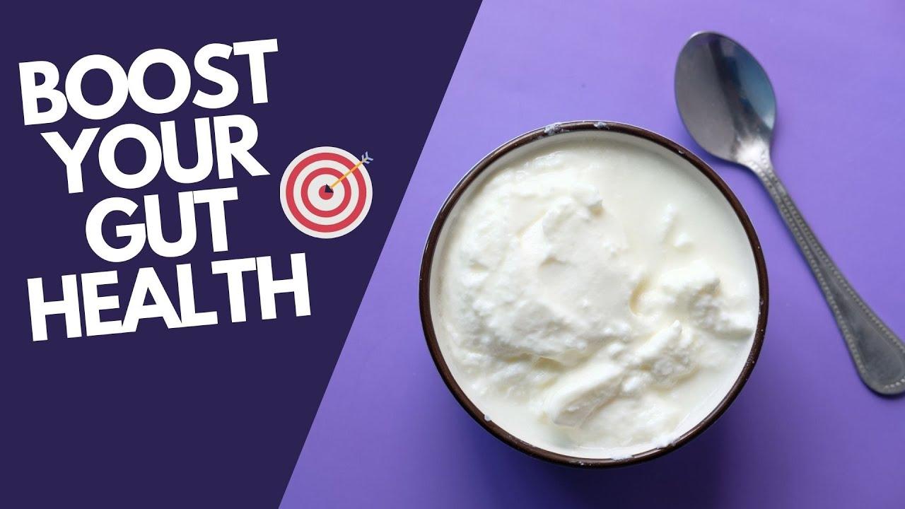 KEFIR - Probiotic for healthy gut | Healthy Executives Club