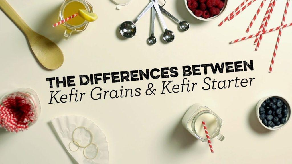 Kefir Grains vs Powdered Kefir Starter – What's the difference?