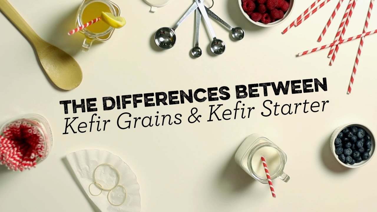 Kefir Grains vs Powdered Kefir Starter - What's the difference?